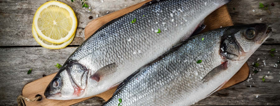 2 Fish a Week